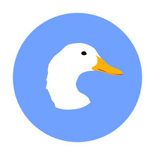 Domestic White Duck Had Vector...