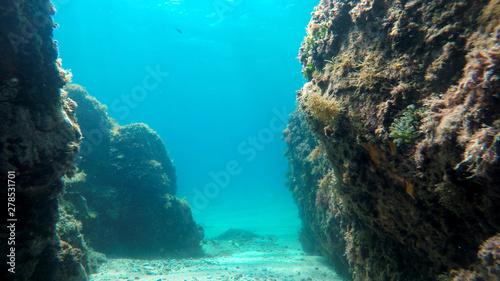 Fotografie, Obraz  rocks in the sea, natural underwater background