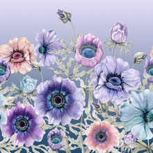 Beautiful Colorful Anemone Flo...