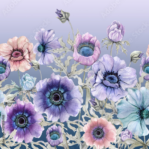 Fotografija Beautiful colorful anemone flowers with green leaves on gradient background