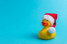 Rubber Duck With Santa Hat On ...