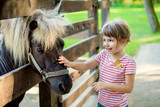 The little girl 3-4 years petting a pony through a wooden fence
