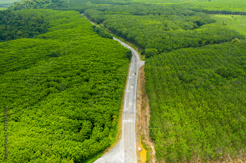 Foto auf AluDibond Grun Aerial view of a rural road through a forest with lush greenery.