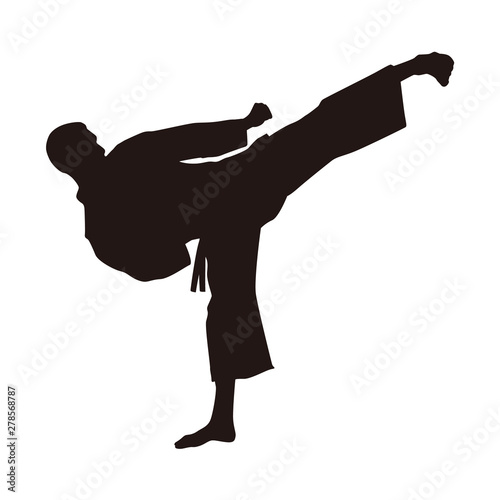 Photo  Martial Arts Fighter Silhouettes
