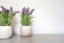 Bouquet Of Dry Lavender In Ceramic Pot With White Wall. Copy Space For Text.