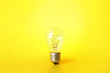 canvas print picture - New incandescent lamp bulb on yellow background