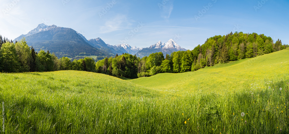 Fototapety, obrazy: Scenic panoramic view of idyllic rolling hills landscape with blooming meadows and snowcapped alpine mountain peaks in the background on a beautiful sunny day with blue sky and clouds in springtime