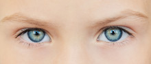 Site Header. Beautiful Girl With Expressive Eyes