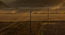 Telegraph Or Telephone Wires In A Rural World