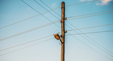 Old Wooden Electric Pole With ...