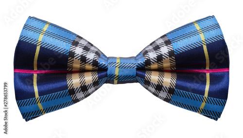 Fotografía Plaid Blue Bow Tie Cut Out