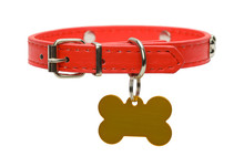 Red Dog Collar And Tag Cut Out