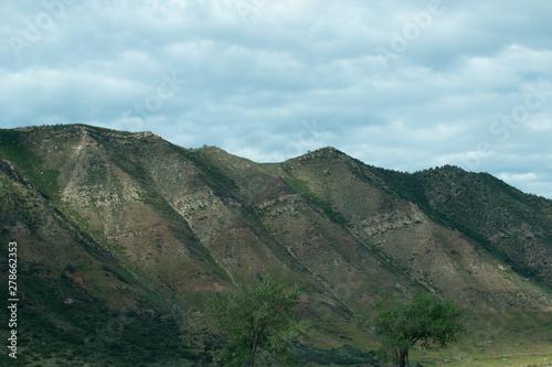 Sunny Mountain Side