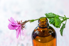 Geranium Essential Oil Extract, Infusion, Remedy, Tincture Container On Wooden Background