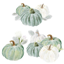Handpainted Watercolor Pumpkins