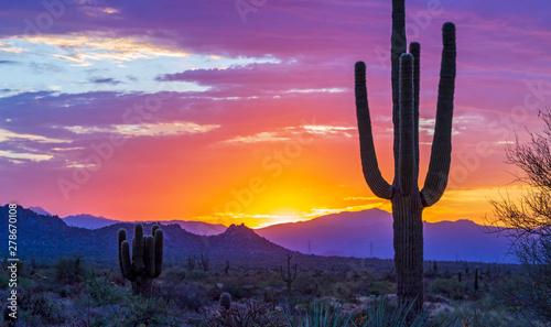 Valokuvatapetti Stunning Sunrise In North Scottsdale AZ Desert Preserve