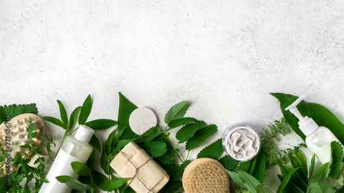 Pinturas sobre lienzo  Natural Skincare and leaves