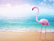 canvas print picture - pink flamingo on beautiful sandy beach and soft blue ocean wave summer concept background