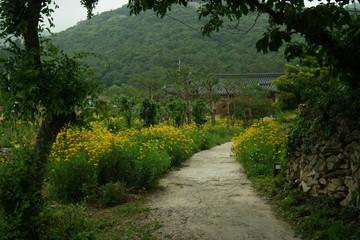 Fototapeta na wymiar Buyongdong Garden of South Korea