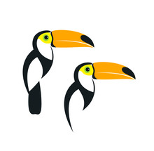 Toucan Logo. Isolated Toucan On White Background
