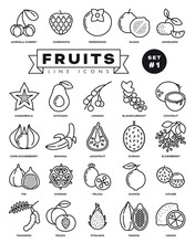 Domestic And Exotic Fruit Thin Line Web Icon Set. 25 Simple Vector Symbols Of Fig, Durian, Jackfruit, Cape Gooseberry, Guava And Other Vegetarian Food. Outline Icons Collection.