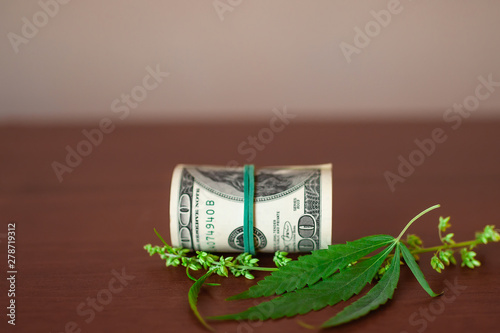 Cannabis CBD with seeds and dollars in money tied with a