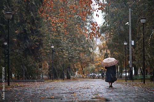 Fotografia Autumn rain in the park