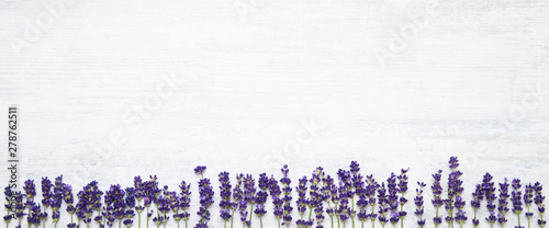 Photo sur Aluminium Lavande Lavender flowers border on white background. Copy space, top view. Summer background. Copy space, banner