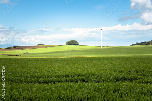 Papiers peints Bleu Lonely wind turbine in a rolling rural landscape under blue sky in summer
