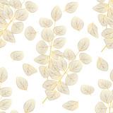 Wzór z liści eukaliptusa. Ilustracja wektorowa. - 278814983