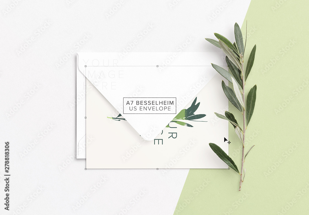 Fototapety, obrazy: Mockup of Card with Envelope and Olive Branch
