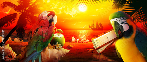 Fotografiet  Papagei im Urlaub am Strand