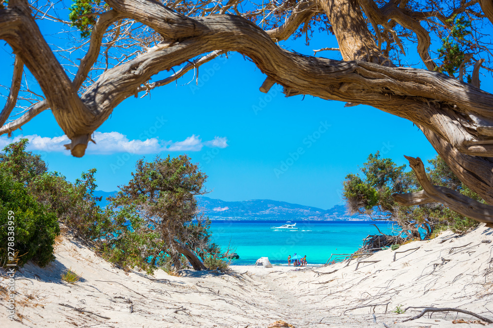 Fototapety, obrazy: Exotic Chryssi island at the south of Crete, with the amazing Golden Beach, Greece