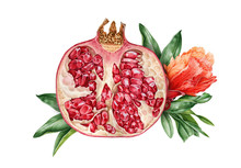 Watercolor Illustration Of A Pomegranate With Flowers Composition. Hand Drawn Fresh, Organic Garnet Fruit Surrounded With Leaves.  Isolaed On White Background.