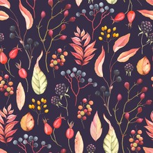 Abstraction Seamless Pattern With Blackberry, Rose Hips, Leaves And Branches Plants. Vector Illustration In Vintage Style On Dark Background.