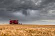 Leinwanddruck Bild - finish the harvest before the storm arrives