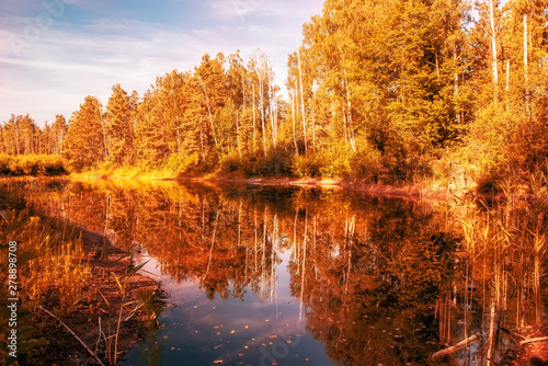 Autumn view of a lake with golden trees above the water.