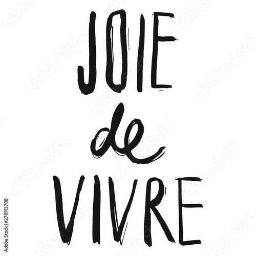 Obraz na plátně Joie De Vivre French Sayings or Words Brush Lettering