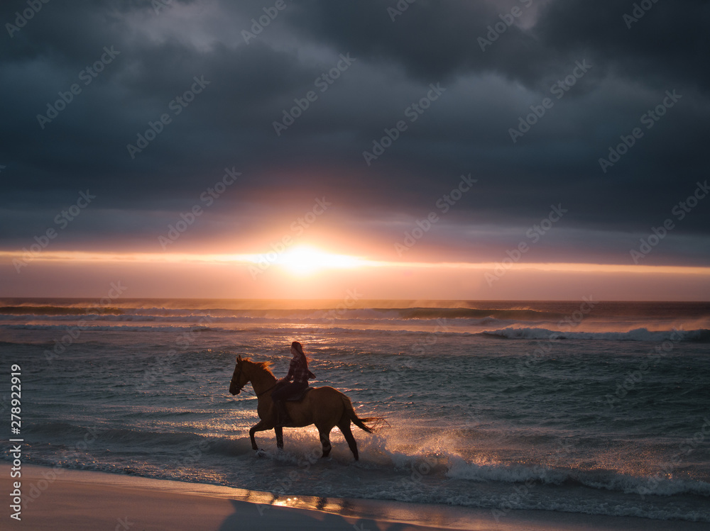 Fototapety, obrazy: Female riding horse along the beach