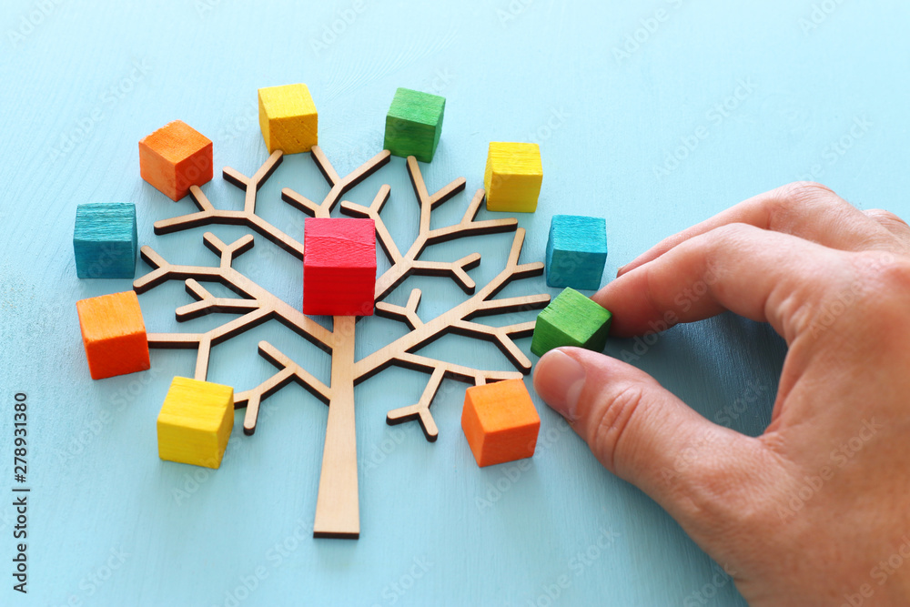 Fototapeta Business image of wooden tree with colorful cubes over blue table, human resources and management concept