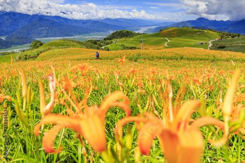 Obraz na plátně beauty of Taiwan
