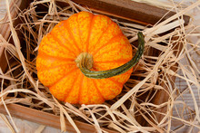 Decorative Pumpkin In Wooden C...