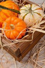 Decorative Pumpkins And Gourds In Wooden Crate With Straw.