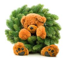 Teddy Bear With Christmas Wreath