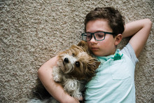 Boy Looking At His Pet Lap Dog Lying On The Floor In Living Room.