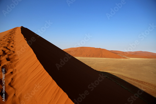 Poster Corail Namib desert Namibia
