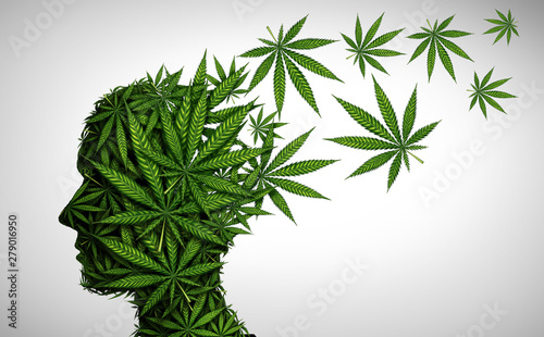 Marijuana Effects On The Brain Canvas Print