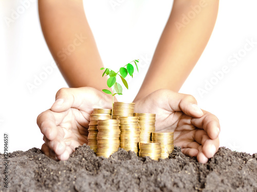 Human hand Protective coin stack and plant, Invest your money to get in come,gro Canvas-taulu
