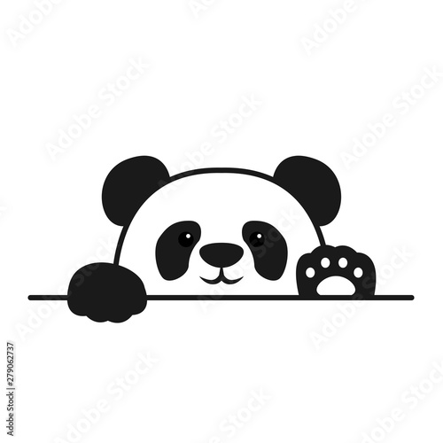 Photo  Cute panda paws up over wall, panda face cartoon icon, vector illustration