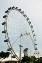 Ferris Wheel - Singapore City